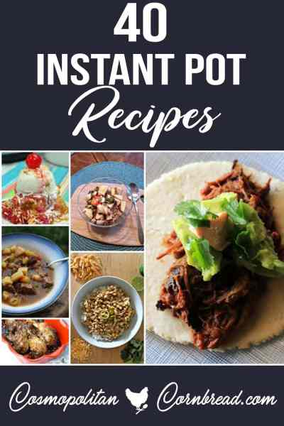40 Instant Pot Recipes – Entrees, Sides, Dessert and More!