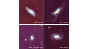 Galaxy mergers trigger black hole growth