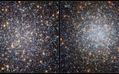 White Dwarfs Aren't As Dead As We Thought