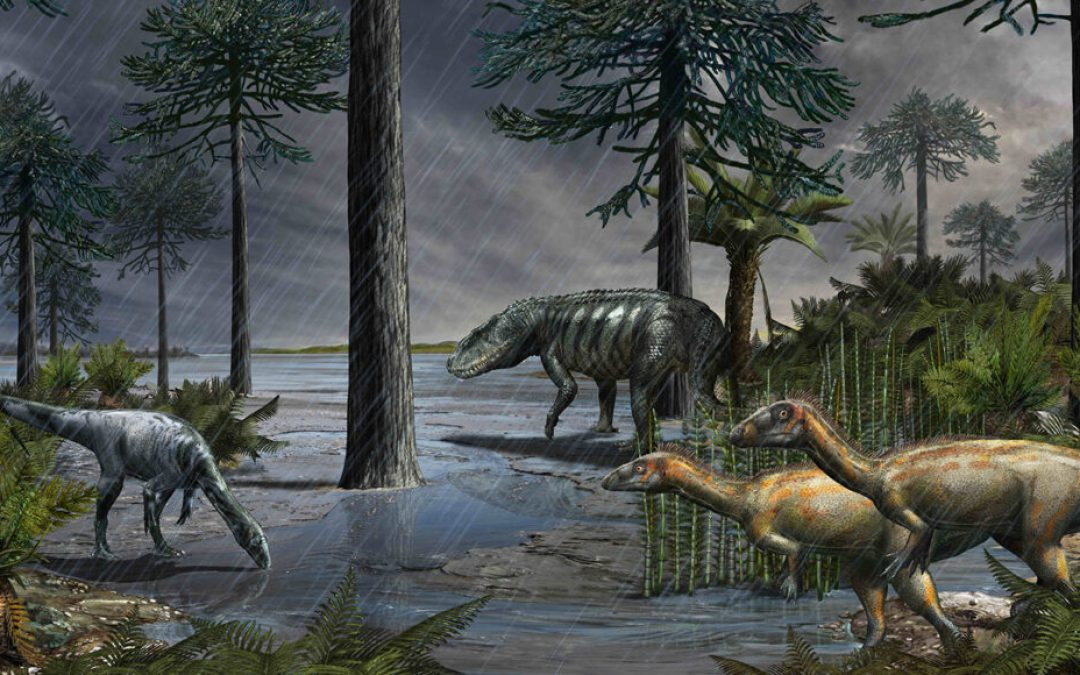 Volcanic Eruptions Lead to Rain Lead to Giant Dinosaurs