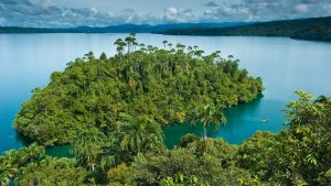 Denisovan DNA may have aided Pacific migration