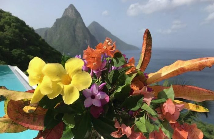 A hand holds a colourful posy of flowers picked from the garden at Cosmos St Lucia, with the infinity pool and the Pitons in the background