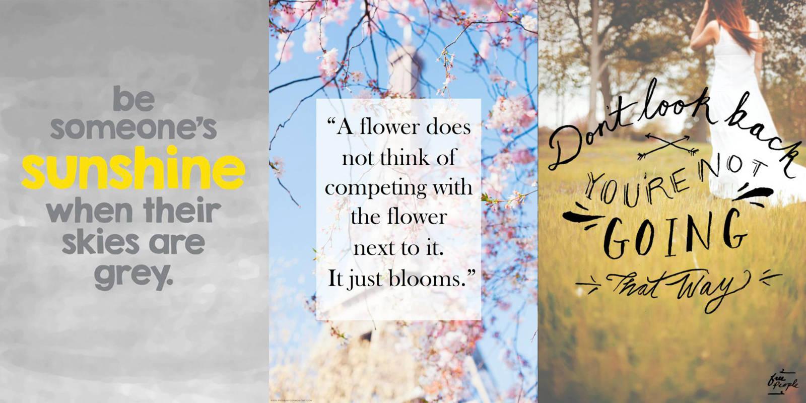 18 Pretentious Pinterest Inspiration Quotes That Do