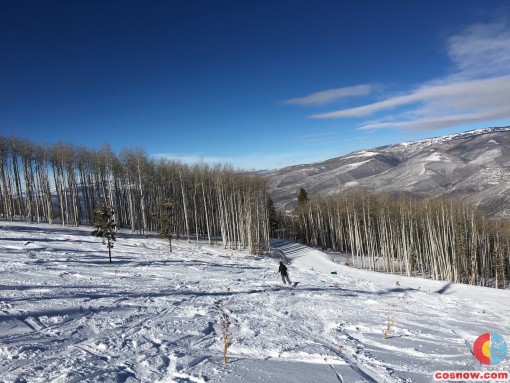 Fresh power at the top of Coyote Glade at Beaver Creek