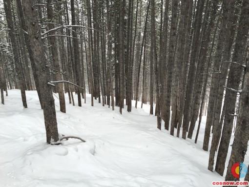 Ski run at Breck