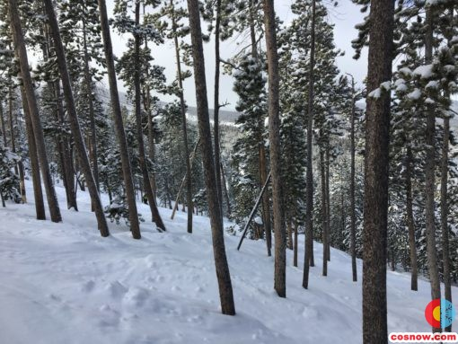 Skiing in the trees at Winter Park