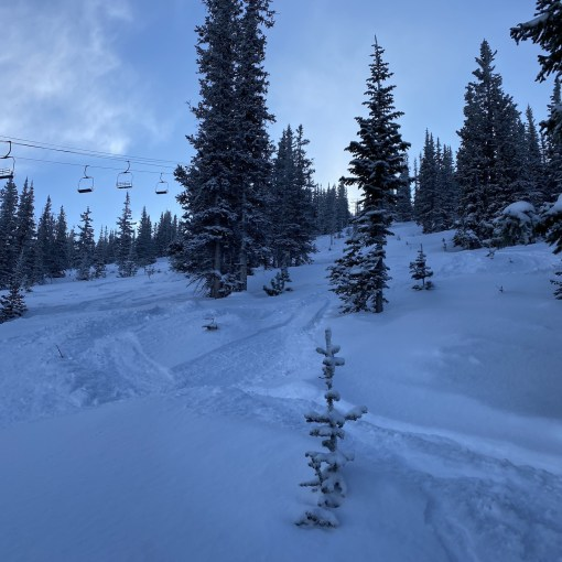 Fresh tracks in Eagle Wind on January 2, 2020