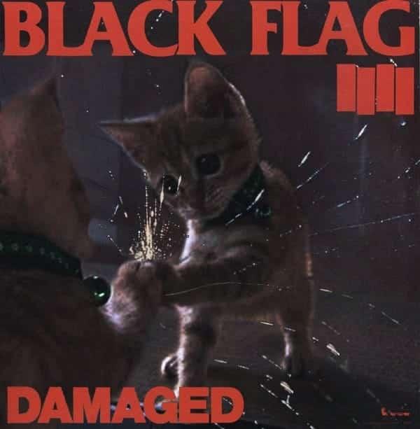 "Cat Flag, ""Damaged"""