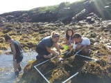 Kylla lends her algae expertise to some COSA students