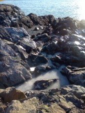 Frozen tide pool