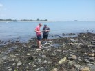 Students reference their self-made field guides to ID species during a rocky shore survey on Georges Island