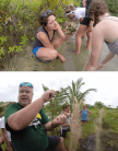Top: Hollis Jones inspects a coral skeleton. That muddy rock has been around for longer than human civilization. Bottom: Bill talks about the history of Bocas reefs and explains how we can use coral fossils to tell us about the natural world of the past. (photo credit: Janine Ledet)