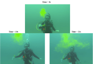 Lauren Josephs squirts fluorescein dye into the water column. By measuring the dye dispersal over a time-lapse video you can get an idea of water turbulence around coral reefs.