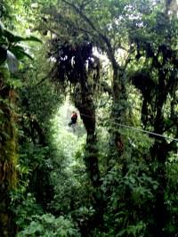 Zip-Line Canopy Tours in Costa Rica