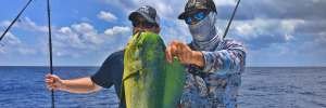 Dolphin Fishing in Florida Keys | Costa Morada