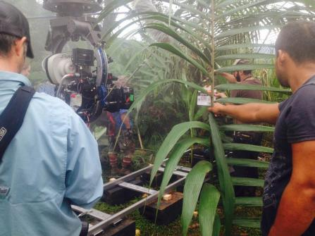 suicide_squad_filming_in_costa_rica133