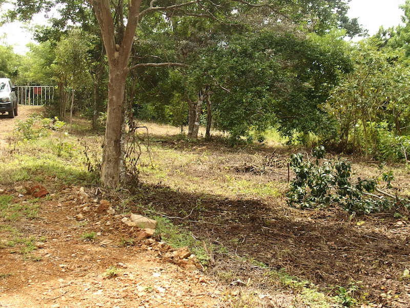 LOT 1 -buildable oceanview homesites for sale in san ramon costa rica