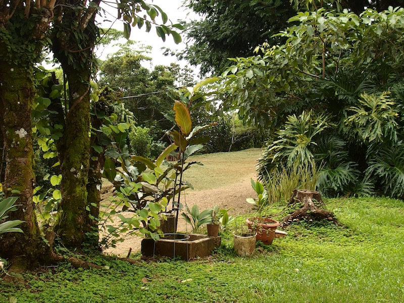 house for rent in san ramon costa rica with lovely gardens on organic coffee farm