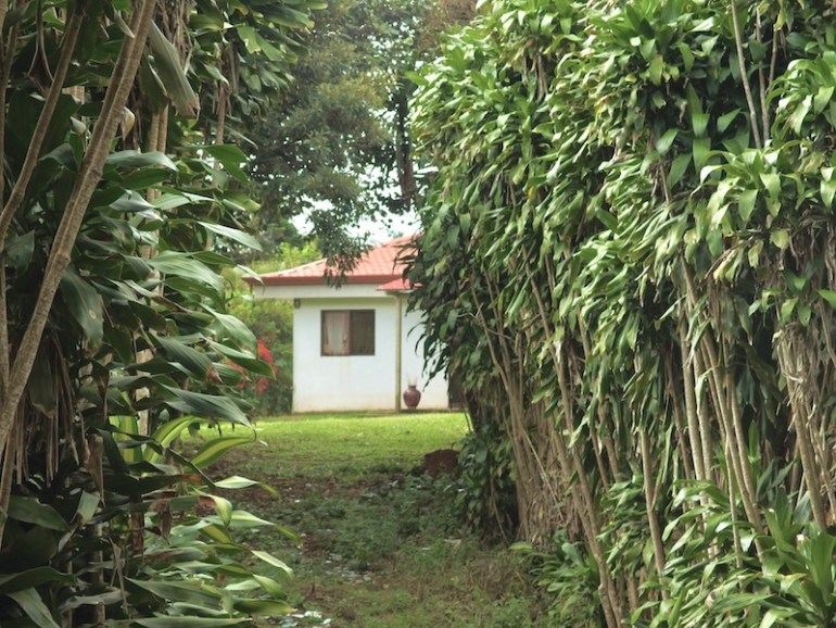 San Ramon Costa Rica House for Sale on Bio Diverse Lot