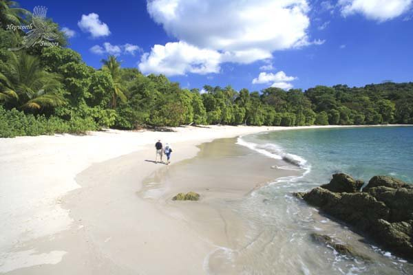 Manuel Antonio Area Surf Guide