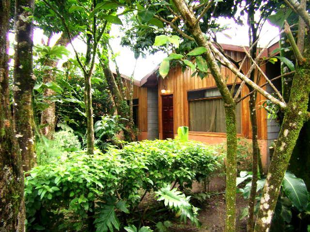 Support Humble Businesses? Visit Monteverde Villa Lodge In Monteverde!