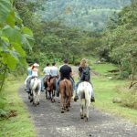Horseback Riding to the La Fortuna Waterfall - Arenal Mundo Aventura