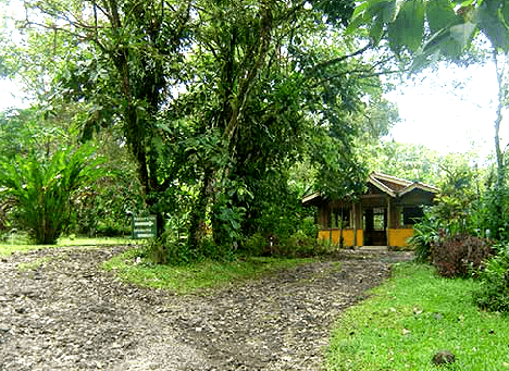 Arenal Oasis' Butterfly Garden