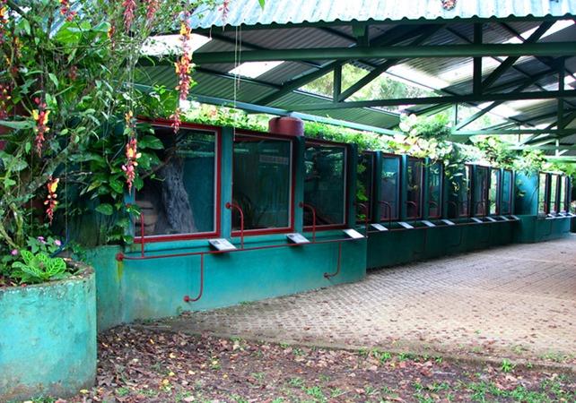 Parque Reptilandia's Reptile Exhibit