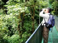 Ricky - Monteverde Hanging Bridges