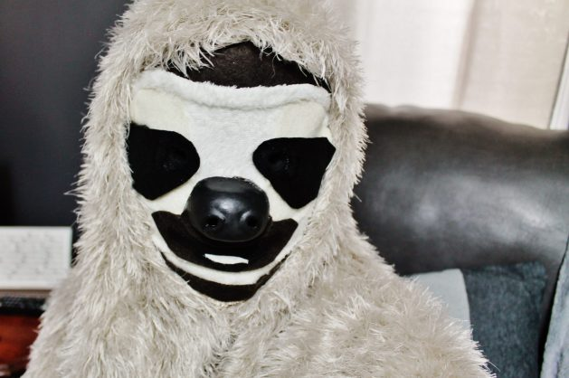 diy sloth costume