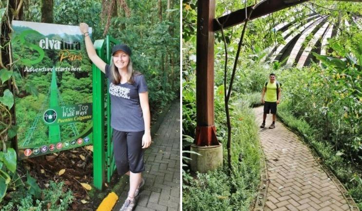 Selvatura Monteverde: Ziplining, Hanging Bridges, Butterfly ...