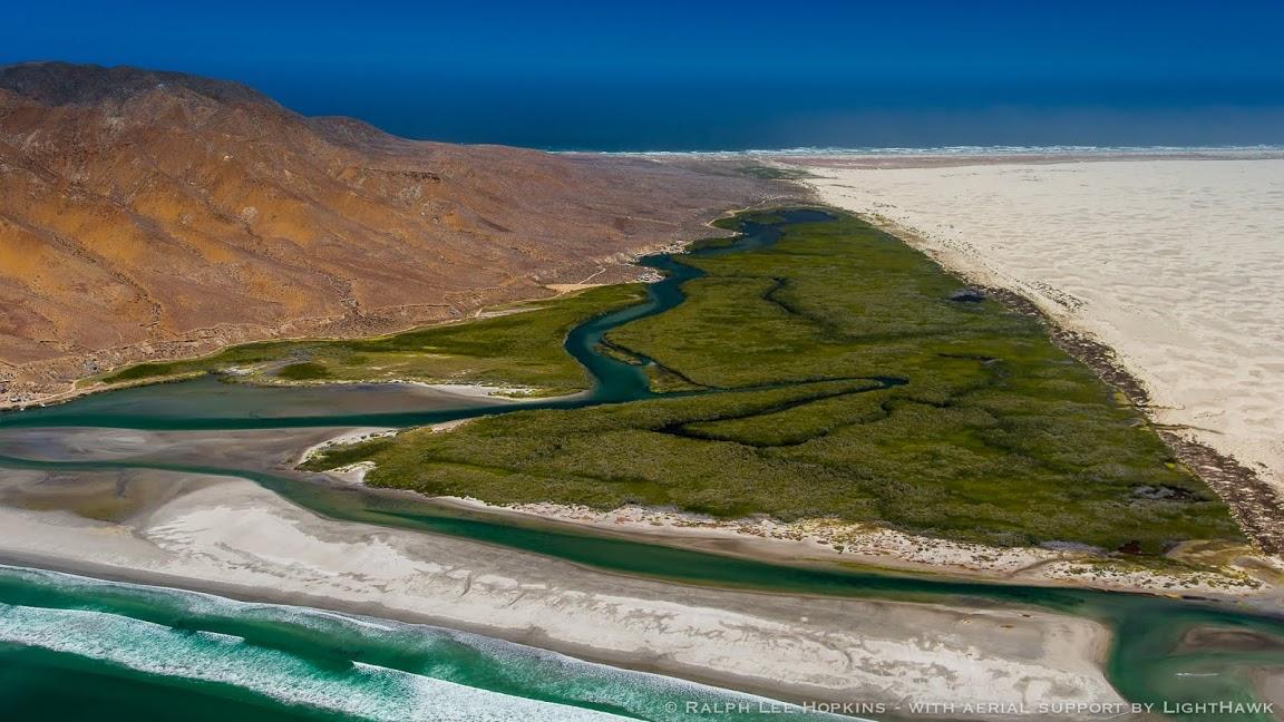 Manglares y Dunas en Isla Magdalena