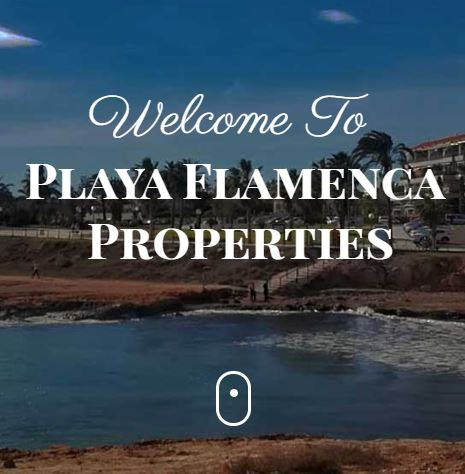 Playa Flamenca Properties