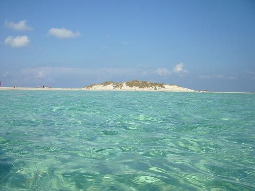 Resultado de imagen de playa s´espalmador