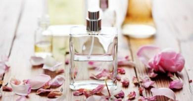 Nueva exposición en la Capital del Perfume