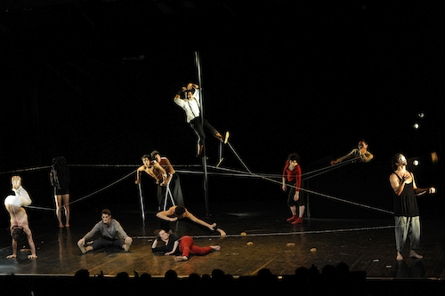 Circo Made In Cannes
