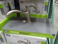 Water Ridge Pull-Out Kitchen Faucet