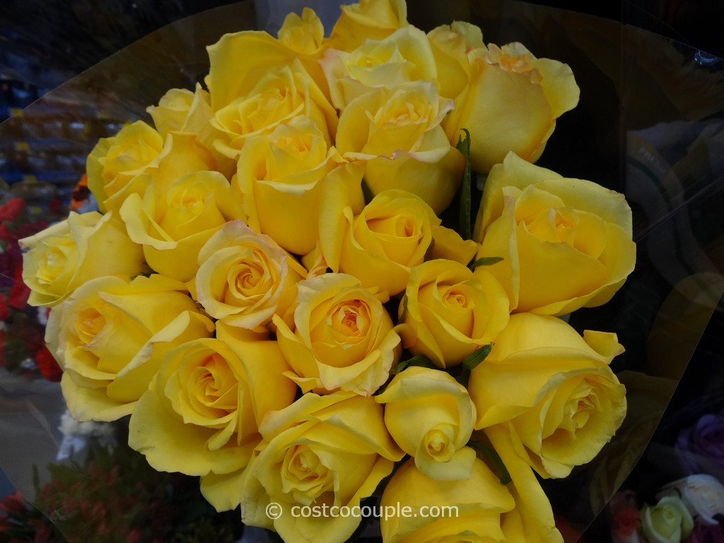 2 Dozen Premium Rainforest Alliance Certified Roses