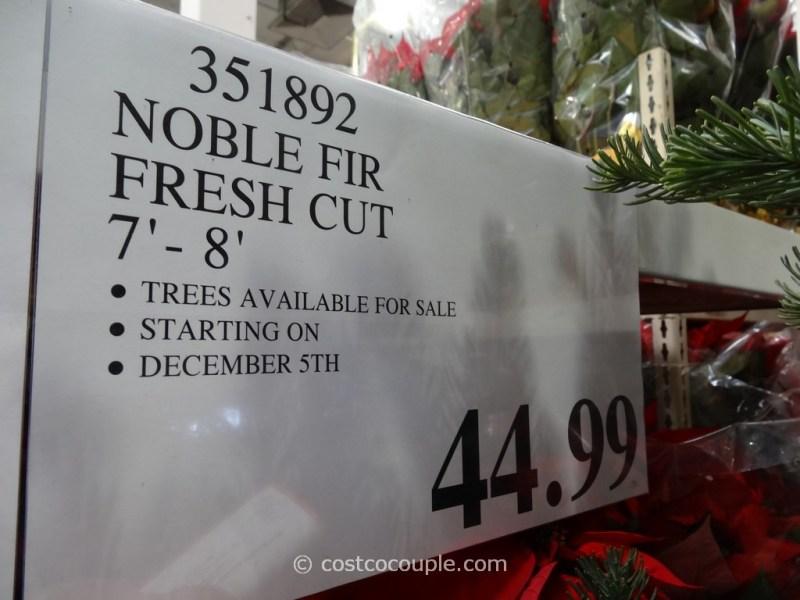 fresh cut le fir christmas tree