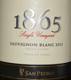 2013 Vina San Pedro 1865 Single Vineyard Sauvignon Blanc