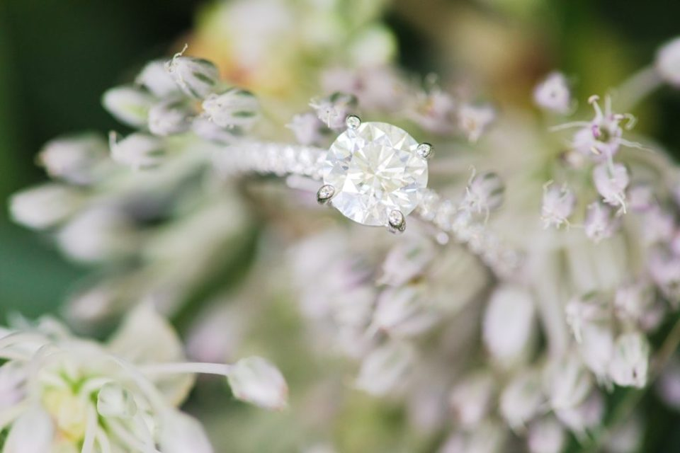 engagement ring by costola photography