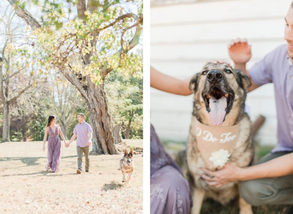 Romantic Fall Engagement with dog  in Southern Maryland by Costola Photography