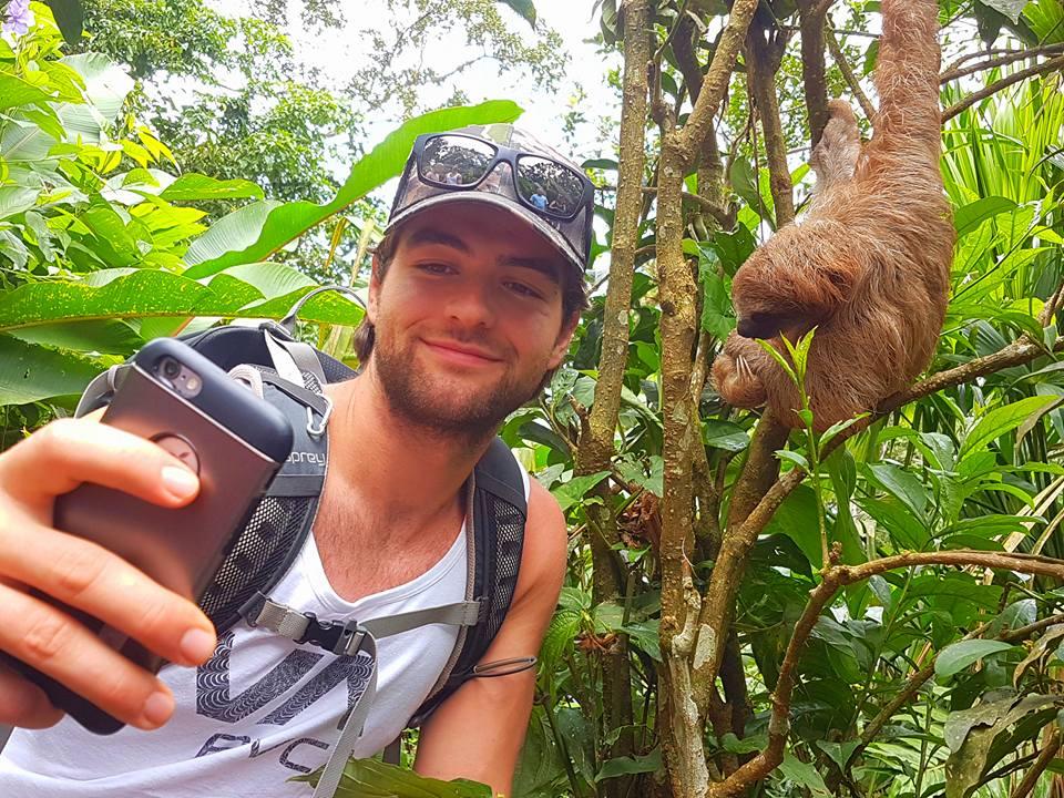 tour, tours, sloths, paresseux, guanacaste, costa rica