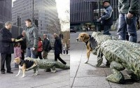 Dog Eaten by Alligator Costume | Costume Pop | Costume Pop