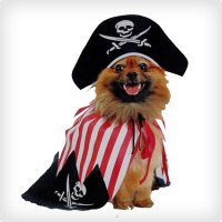 40 Pirate Dog Costumes That Will Melt Your Heart - Costume ...