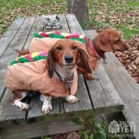 Weiner Dogs Hot Dog Costume - Costume Yeti