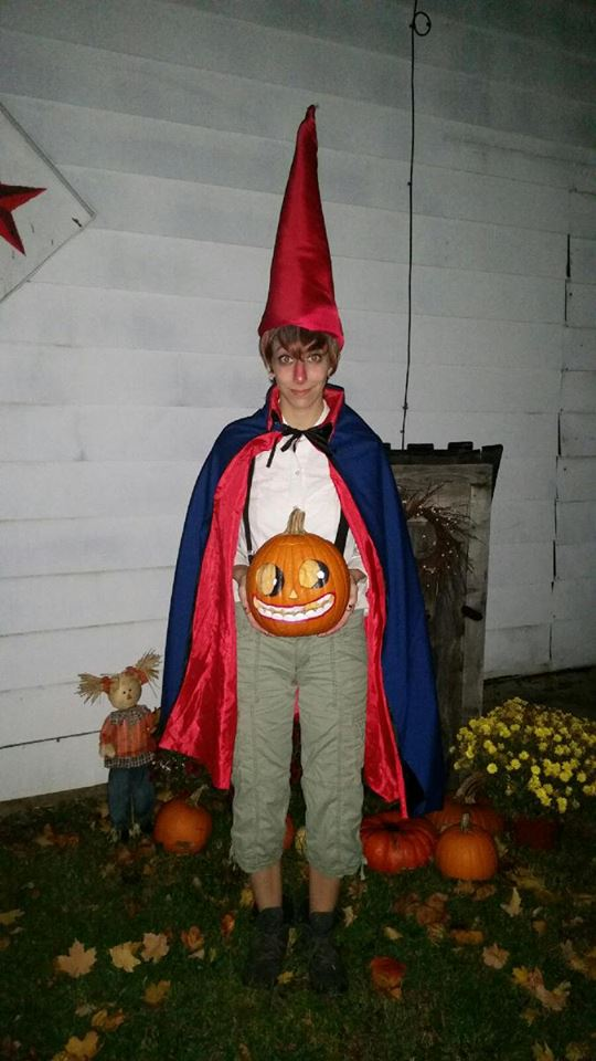 wirt from over the