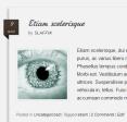 OviDi - Blog