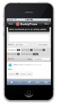 BuddyMobile - Notifications