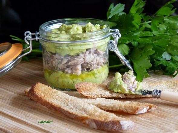 Guacamole piquant & sardines